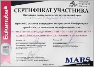 certificate_40_Kotikov
