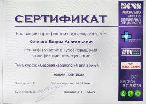 certificate_42_Kotikov