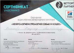 certificate_43_Kotikov
