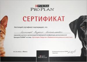 certificate_46_Kotikov