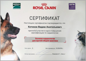 certificate_47_Kotikov