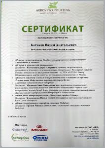 certificate_48_Kotikov