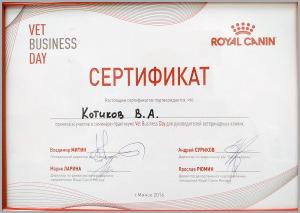 certificate_49_Kotikov