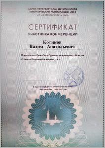 certificate_50_Kotikov