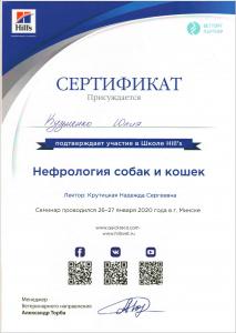 certificate_79_Kuzmenko