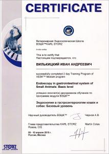 certificate_72_Vilkickij