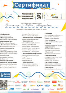 certificate_74_Vilkickij