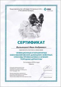 certificate_75_Vilkickij