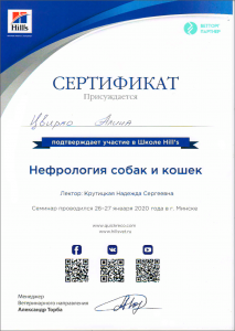 certificate_99_Cvirko