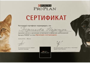 certificate_80_ Grodnikova