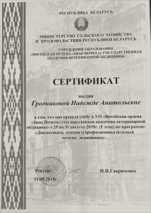 certificate_85_ Grodnikova
