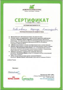 certificate_92_Kovalevskaya