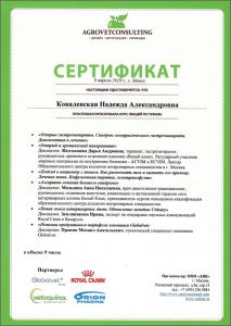certificate_93_Kovalevskaya