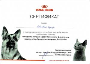 certificate_95_Kovalevskaya