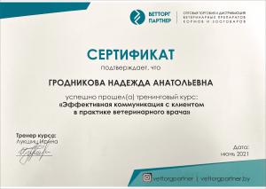 certificate_84_ Grodnikova