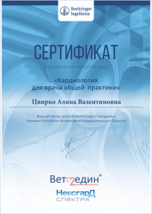 certificate_101_Cvirko