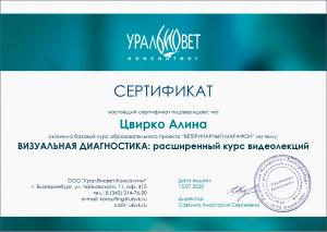 certificate_106_Cvirko