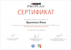 certificate_111_Yarylkina