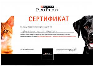 certificate_112_Yarylkina