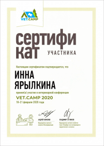 certificate_113_Yarylkina