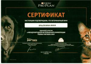 certificate_116_Yarylkina