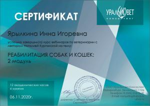 certificate_109_Yarylkina