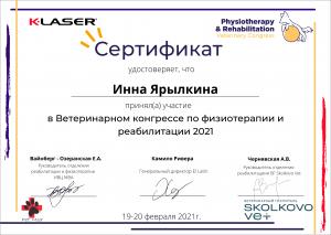 certificate_119_Yarylkina
