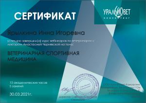 certificate_110_Yarylkina