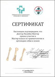 certificate_86_Pileiko