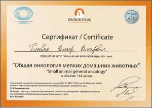 certificate_87_Pileiko