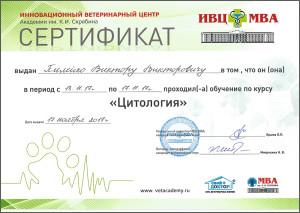 certificate_89_Pileiko