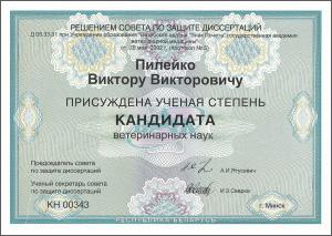 certificate_90_Pileiko
