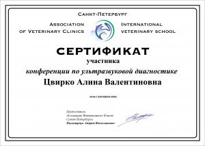 certificate_104_Cvirko