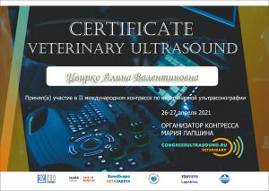 certificate_100_Cvirko
